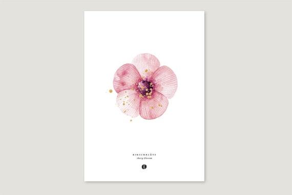 "Art Pressure/Fine Art Print: ""Cherry Blüte"""