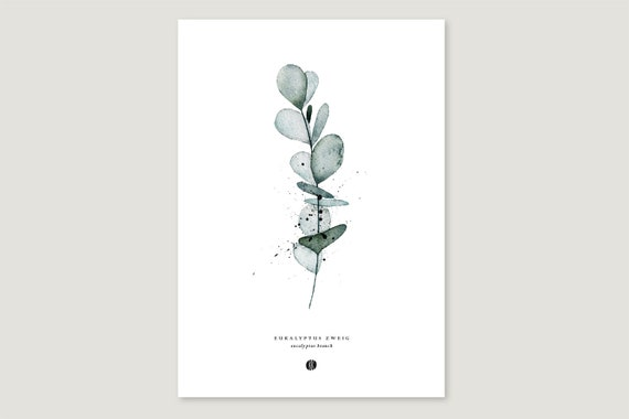 "Art Pressure/Fine Art Print: ""Eucalyptus.Branch"""