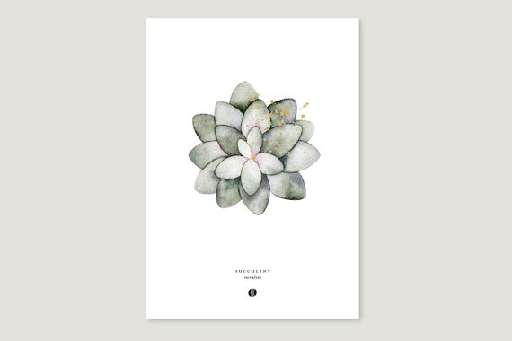 "Art Pressure/Fine Art Print: ""Succulent"""