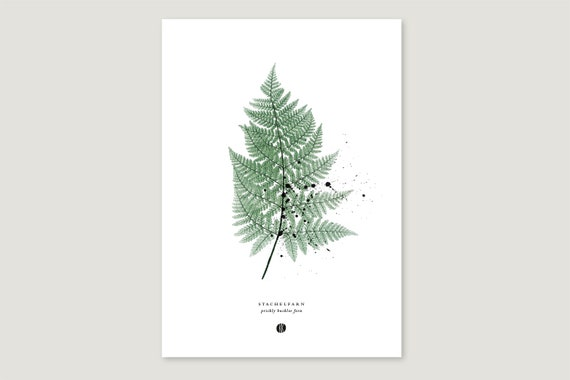 "Art Pressure/Fine Art Print: ""Stachel.Farn"""