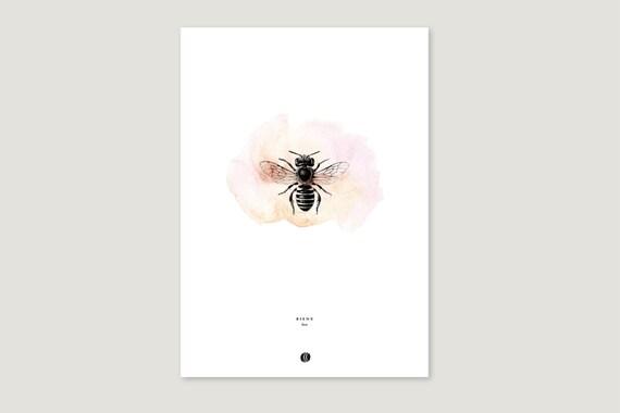 "Art Pressure/Fine Art Print: ""Biene.Klecks"""