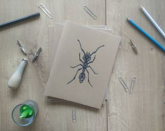 Printed notebook ant