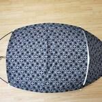 Prototype recumbent 3 wheel protection