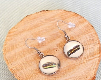 Stainless steel earrings with resin art NZ abalone/paua shell - Taupo series