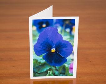 Purple pansy flower photo greeting card