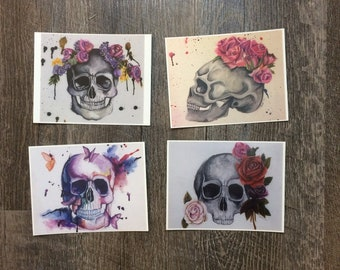 Skulls Postcard set