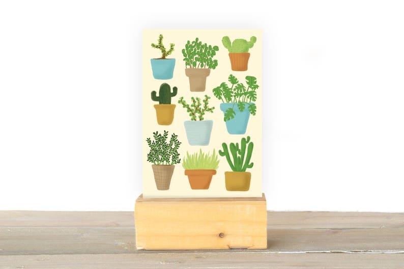 Plants image 1