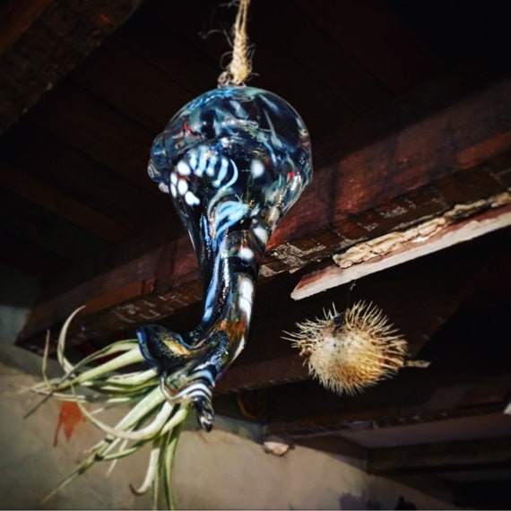 Decorative hand blown hot glass and airplant jellyfish