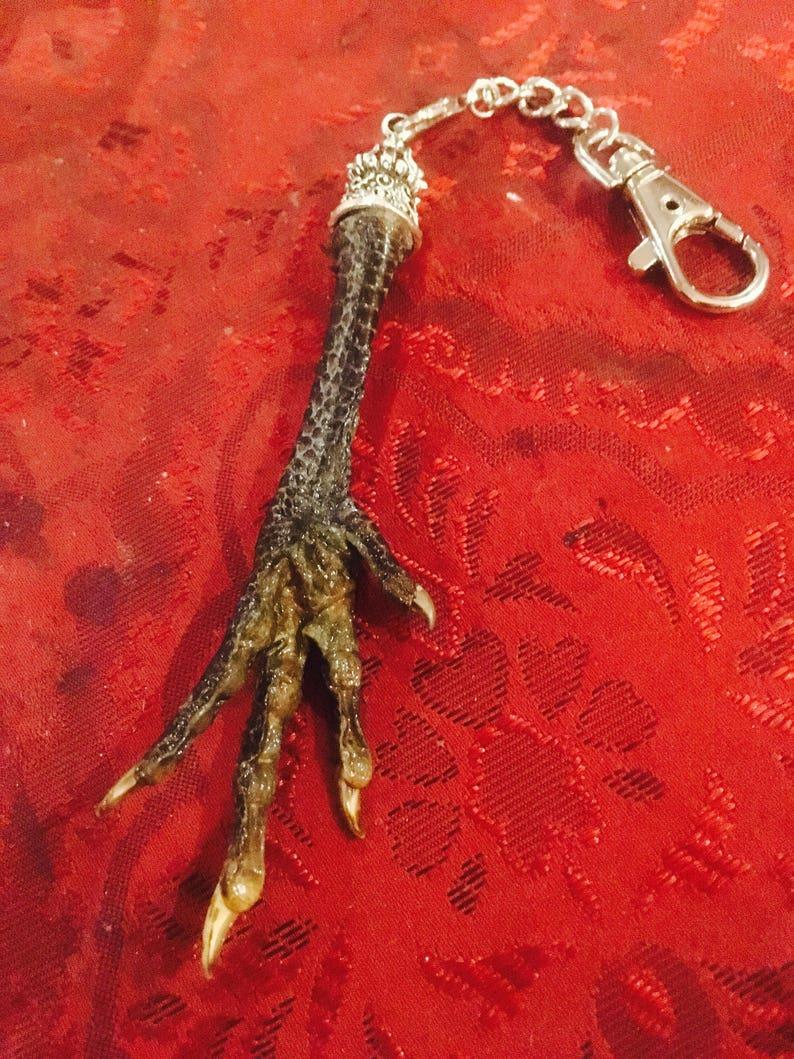 Voodoo Chicken Foot Key Chain  e592ccc3572c