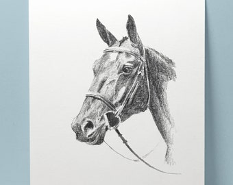 Original Art Wall Art Decor Horse Racing IN THE MONEY Pencil Drawing Greeting Cards Choose Signed Print
