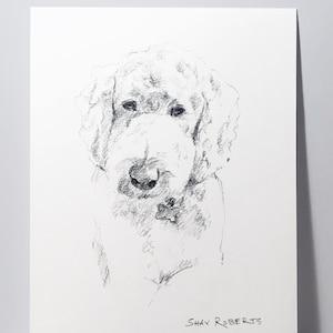 Dog Portrait Custom SketchDog Drawing5x7 Pencil SketchGraphite ArtDog Gift