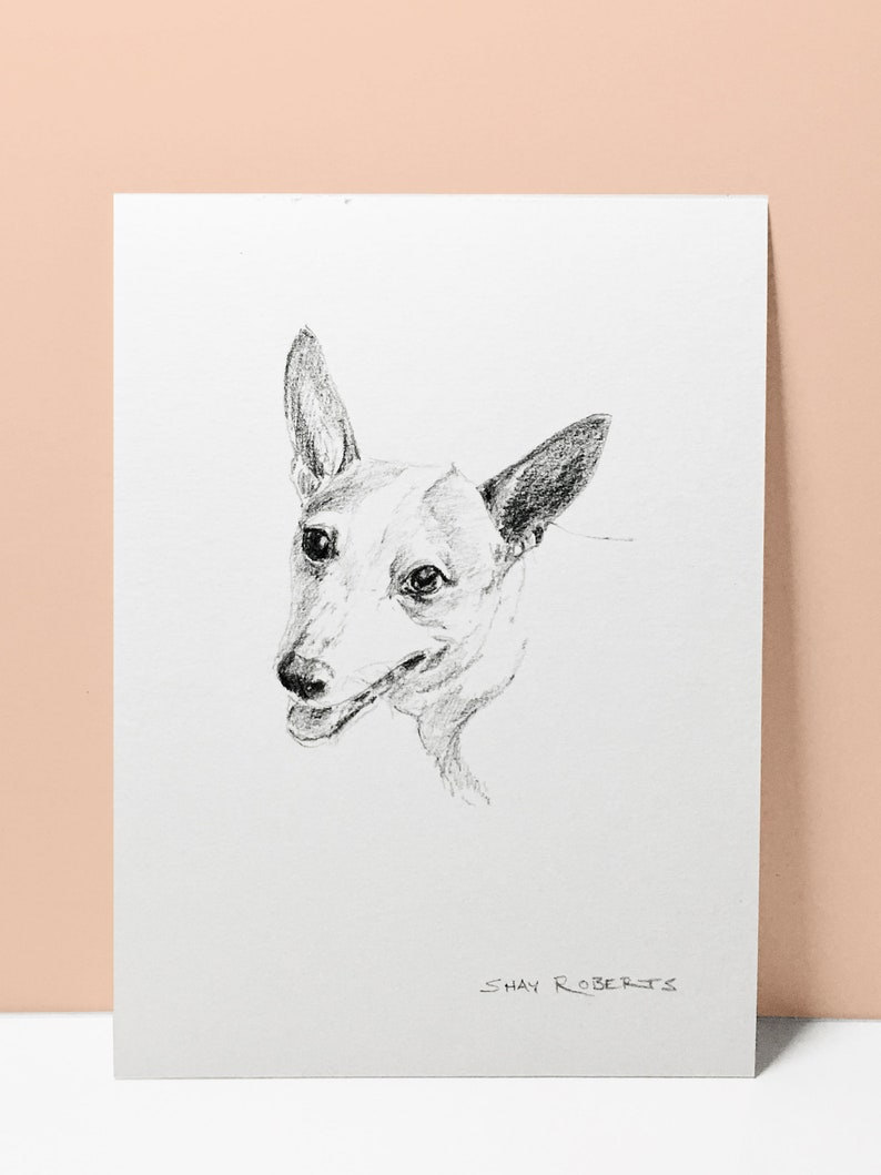 Dog portrait custom sketch dog drawing 5x7 pencil sketch graphite art dog gift