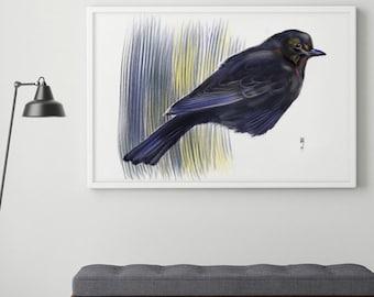 Blackbird Bird Art print. Wall Art, printable art, instant download art by Artmagenta