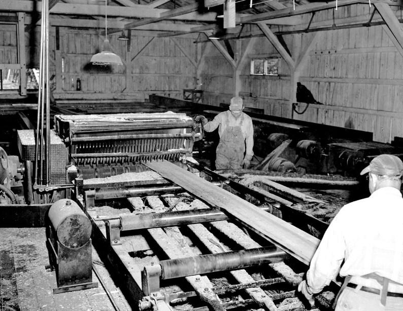 1953 Moore Sawmill, O'Brien, Oregon Vintage Photograph 8 5
