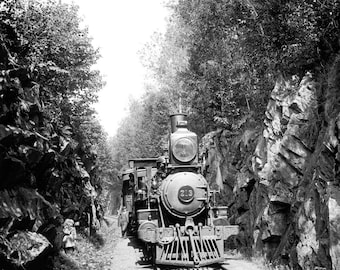 """1900-1906 Train in the Green Mountains, Vermont Vintage Photograph 8.5"""" x 11"""""""