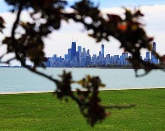 Hidden Chicago Skyline Print