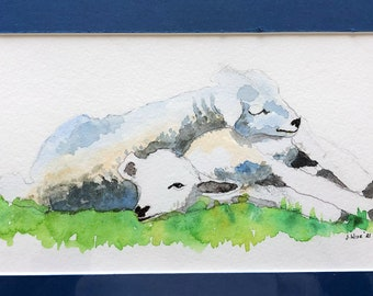 Peace Hill Sheep, Water Colors by Artists Jay Wise, M.D
