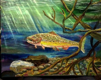 Mountain stream trout