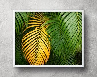 Banana Leaf Printable Palm Leaf Wall Decor Banana Leaf Etsy