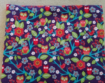 Bright and Bold Owl Baby Blanket