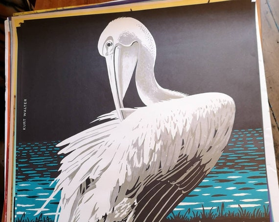 Vintage 1970s Tierpark Berlin Original Zoo Poster Advertising Of A Pelican