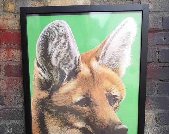 Vintage 1980s Tierpark Berlin Original Framed Zoo Poster Advertising Of A Fox