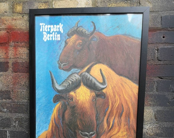 Vintage 1980s Tierpark Berlin Original Framed Zoo Poster Advertising Of A Pair Of Oxen