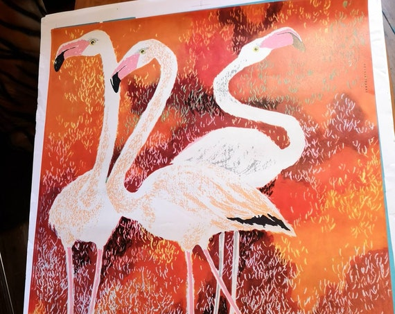 Vintage 1960s Tierpark Berlin Original Zoo Poster Advertising Of Flamingos