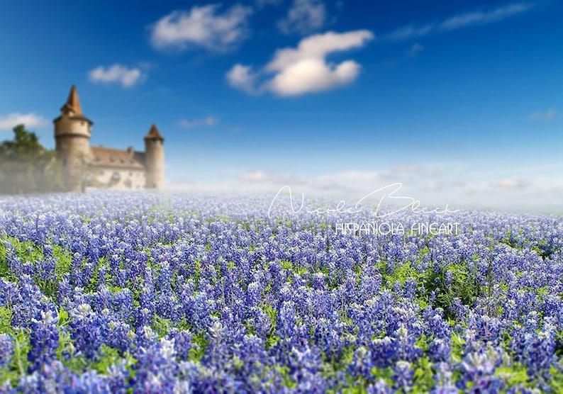 Castello In Campo Cofani Blu Premade Sfondo Campo Di Fiore Blu Cornice Digitale
