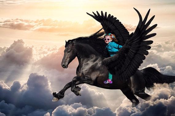 Pegasus Backdrop Flying Horse Scene Premade Backdrop Etsy