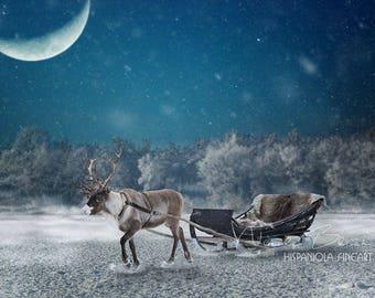 Reindeer with Sled, Winter Landscape, 1 Snow Overlay incl. , Reindeer backdrop Digital, Backdrop, download, Photoshop Backdrop, composite