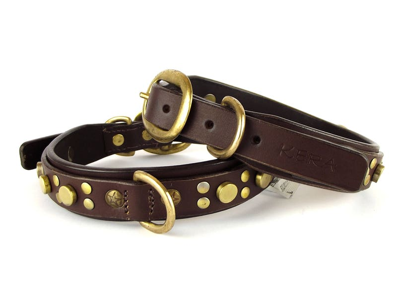 Luxury Dog Collar - Superior Quality Genuine Leather - Chocolate with Solid  Brass Accessories (Small, Medium and Large) by Kera Pets