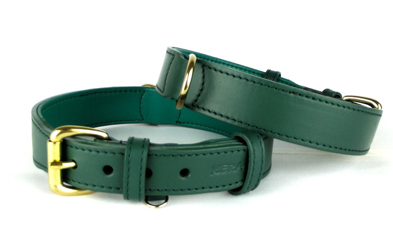 Genuine Italian Leather Green Leather Dog Collar Green Leather with Solid Brass Hardware XS  S  M  L  XL by Kera Pets