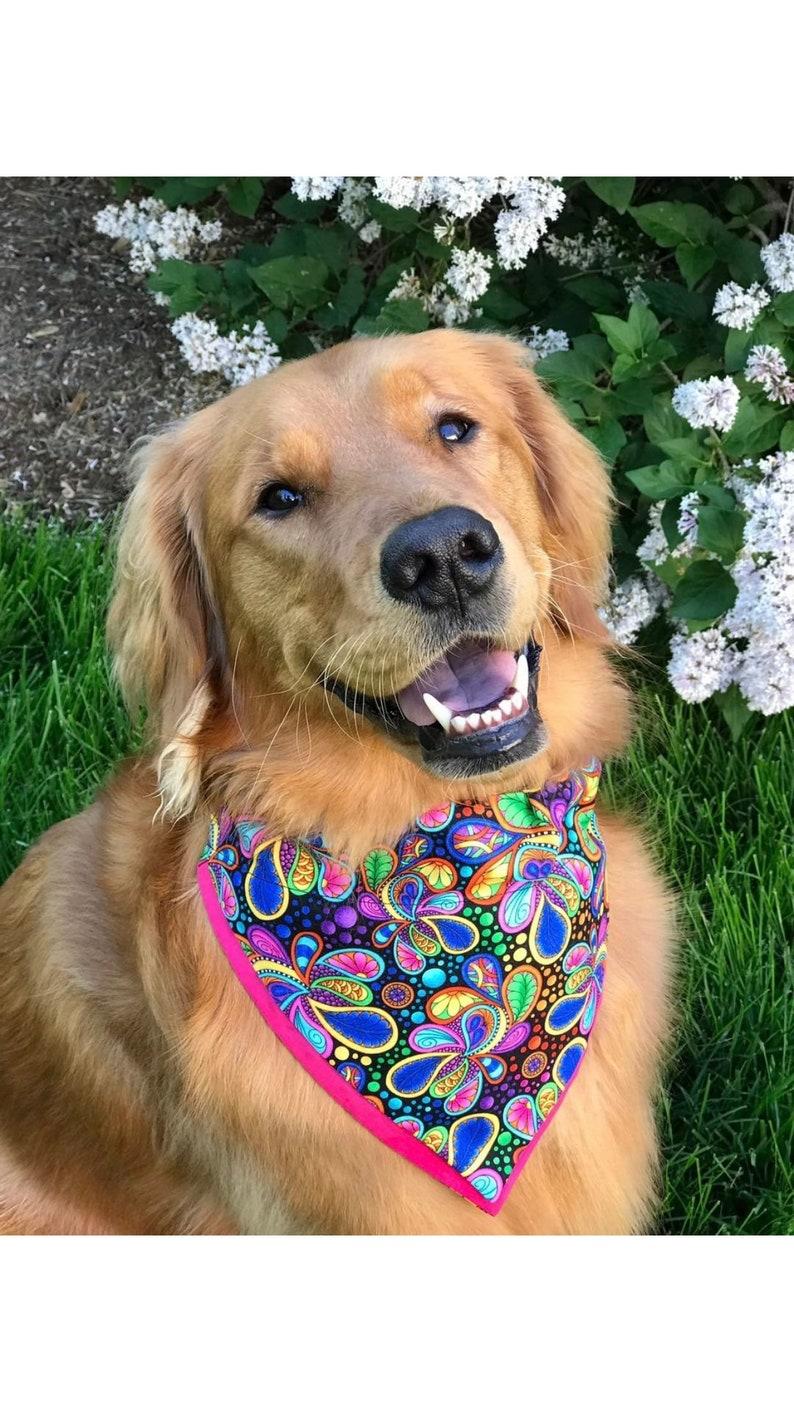 CarnivalParty Dog Bandana made to order