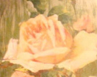 SALE Pretty Vintage Floral Postcard (Pink Rose)