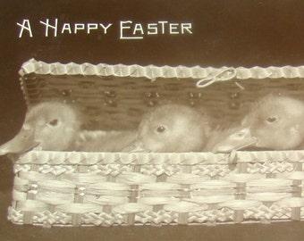 Antique/Vintage Easter RPPC (Ducklings in Basket)