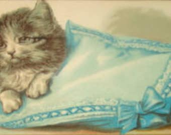 LAST CHANCE SALE Cute Embossed Kitten Vintage Postcard