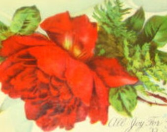LAST CHANCE SALE Pretty Vintage Postcard (Red Rose)