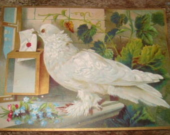 LAST CHANCE SALE 2 Large Pieces of Victorian Scrap (Child and Dove)
