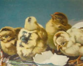Cute Vintage Easter Postcard (Chicks)