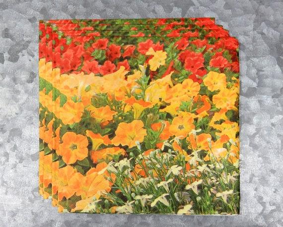 blossom 663 4 Single paper decoupage napkins.Beauty pig piggy