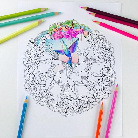 Mandala Coloring Seite Kolibri Malvorlagen Für Erwachsene Etsy