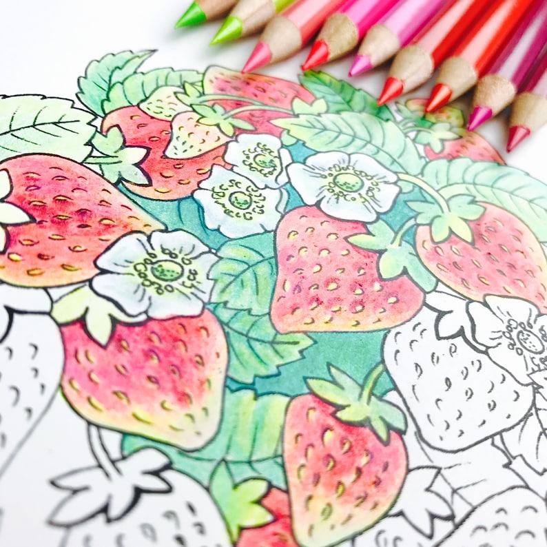 Mandala Kleurplaten Fruit.Mandala Kleurplaat Pagina Lente Kleurplaten Voor Volwassenen Beterschap Aardbei Mandala Digitale Kleuren Hand Getrokken Lijn Art Olga Zaytseva