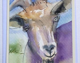Goat in watercolor