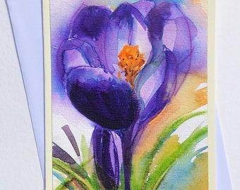 Crocus in watercolor