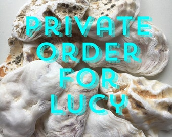 Private order for Lucy