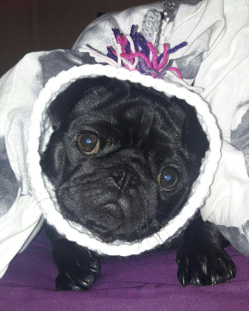 34dcb7d403b Crochet dog snood unicorn snood pug unicorn snood dog