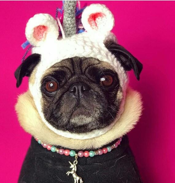 f2471a75730 Crochet unicorn hat unicorn pug hat hats for dogs hats for