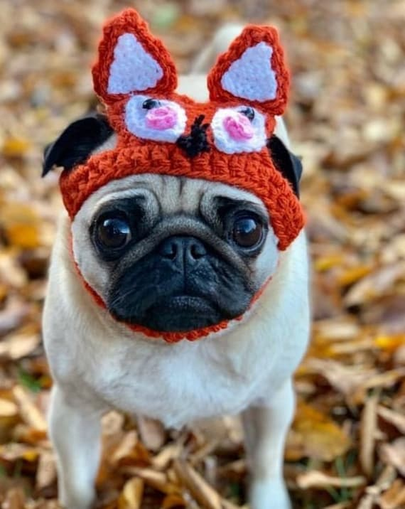 6b9d1b6cd94 Crochet Fox Collection hats for dogs crochet hat for dogs