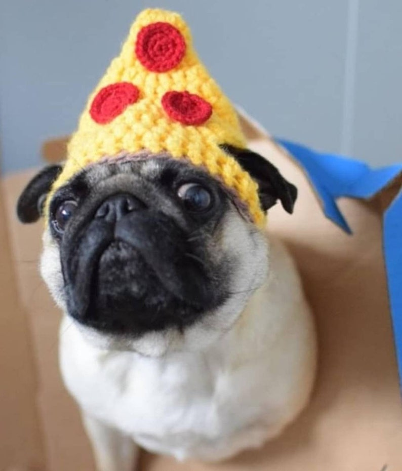 84e00daa103 Crochet Pizza dog Hat pizza hat pug hat hats for dogs hats